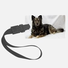 Maia--Keeshond/Cattle Dog/Border Luggage Tag