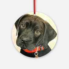 Black Labrador Puppy Portrait with  Round Ornament