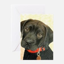 Black Labrador Puppy Portrait with P Greeting Card
