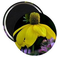 Yellow cone flower Magnet