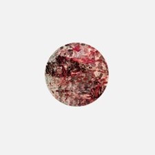 Red Rustic Old Birch Tree Wooden Texture Mini Butt
