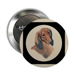 Longhaired Dachshund head stu 2.25