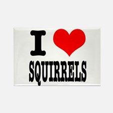 I Heart (Love) Squirrels Rectangle Magnet