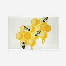Honey Beehive Magnets
