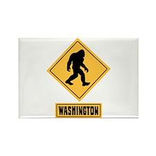 WASHINGTON Magnets