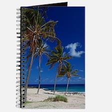 The Beach Journal