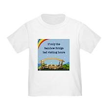 Rainbow Bridge T-Shirt
