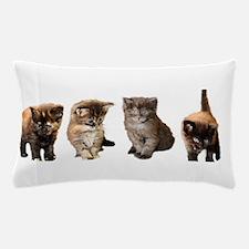 Kitten Pillow Case