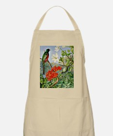 Two Flowering Shrubs of Natal and a Trogon,  Apron