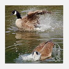 Canada Goose Companionship Tile Coaster