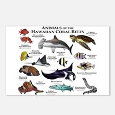 Animals of the Hawaiian Island Coral Reefs Postcar