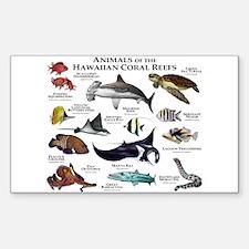 Animals of the Hawaiian Island Coral Reefs Decal