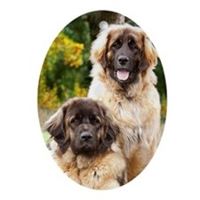 leonberger Oval Ornament