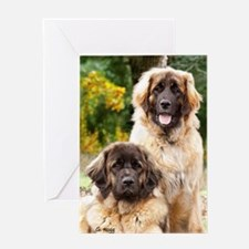 leonberger Greeting Card