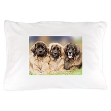 Leonberger Pillow Case