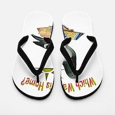 Which Way Is Home? Fun Lost Pigeon Art Flip Flops