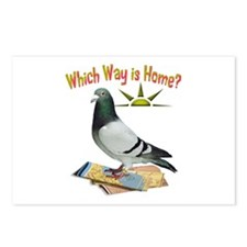 Which Way Is Home? Fun Lost Pigeon Art Postcards (