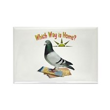 Which Way Is Home? Fun Lost Pigeon Art Magnets