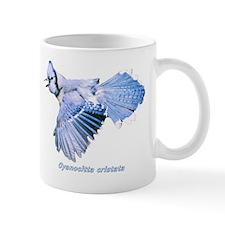 Cyanocitta cristata Mug