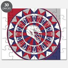 Lacrosse Shakey Dartboard Puzzle