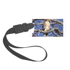 Red Tailed Hawk Laptop and Household Luggage Tag