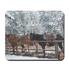 Mule Ride at the Grand Canyon Mousepad