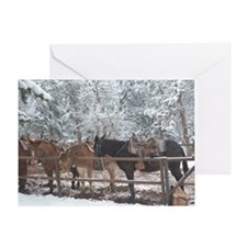Mule Ride at the Grand Canyon Greeting Card