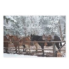 Mule Ride at the Grand Ca Postcards (Package of 8)