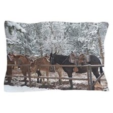 Mule Ride at the Grand Canyon Pillow Case