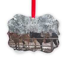Mule Ride at the Grand Canyon Ornament