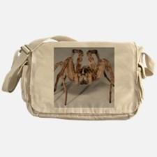 Wolf Spider Messenger Bag