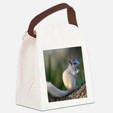 Time to Dance! Canvas Lunch Bag