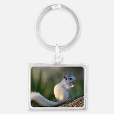 Time to Dance! Landscape Keychain