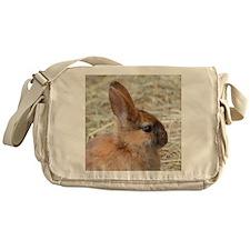 Rabbit001 Messenger Bag