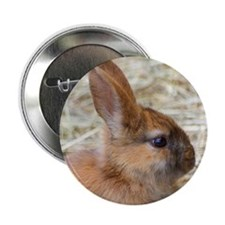 "Rabbit001 2.25"" Button"