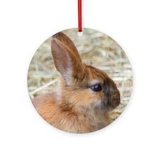 Rabbit001 Round Ornament