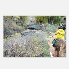 Bright Angel Mule Ride To Postcards (Package of 8)