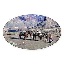 South Kiabab Mule Ride To Phantom R Decal