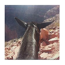 South Kiabab Grand Canyon Mule Ride Tile Coaster