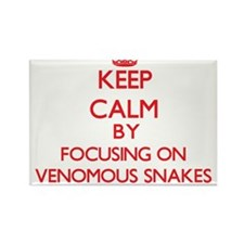 Keep calm by focusing on Venomous Snakes Magnets