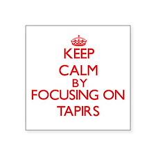 Keep calm by focusing on Tapirs Sticker