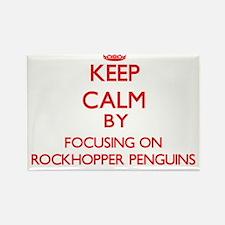 Keep calm by focusing on Rockhopper Penguins Magne