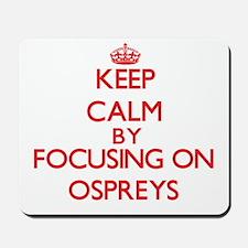 Keep calm by focusing on Ospreys Mousepad