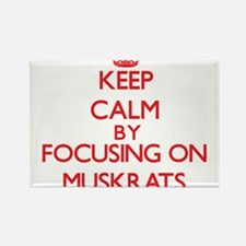 Keep calm by focusing on Muskrats Magnets