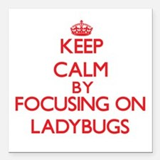 Keep calm by focusing on Ladybugs Square Car Magne