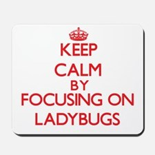 Keep calm by focusing on Ladybugs Mousepad