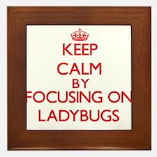 Keep calm by focusing on Ladybugs Framed Tile