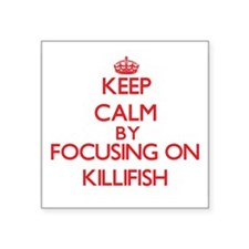 Keep calm by focusing on Killifish Sticker
