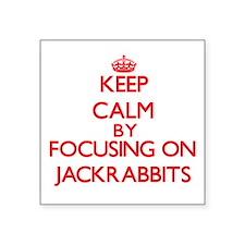 Keep calm by focusing on Jackrabbits Sticker