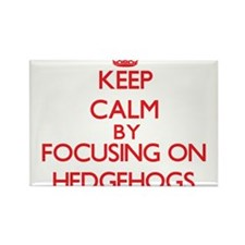 Keep calm by focusing on Hedgehogs Magnets